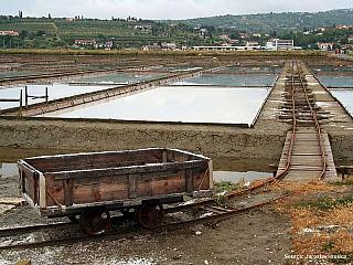 Sečovljská solná pole (Slovinsko)