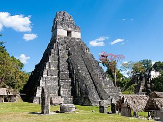 Kdo by neznal, alespoň podle názvu, někdejší mayské město Tikal? Zkvetoucí metropole zbyly dnes bohužel už jen ruiny, to ale neznamená, že zde není nic kvidění – nakonec jde o město pevně spjaté shistorií celé Guatemaly. Navíc, od roku 1979 je Národní park Tikal (o rozloze 570 čtverečních...