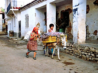 Třímilionová Albánie se rozkládá na necelých 29 tisících kilometrů čtverečních. Mezi její sousedy patří Černá Hora, Kosovo, Makedonie a Řecko. A co že vlastně tato zajímavá a dosud turisticky poměrně neprozkoumaná země nabízí? Tak co třeba hlavní město Tirana? Vjeho okolí je přímo nádherná...