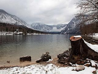 Bohinjské jezero ve Slovinsku leží v nadmořské výšce 525m a má rozlohu okolo 3 km2. Bohinjské jezero je největší ve Slovinsku, pokud nepočítáme proměnlivé jezero Cerkniš. Hloubka jezera dosahuje maximálně 45 metrů a jezero je ledovco-tektonického původu. Jezero je napájeno řekou Savice, která...