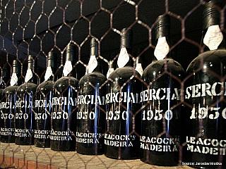 Madeira a madeirské víno (Portugalsko)