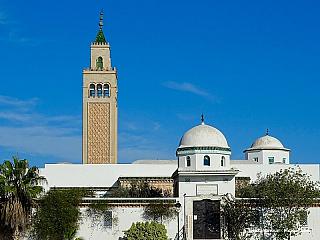 Túnis leží na severozápadním pobřeží Tuniska poblíž jezera Le Lac. Ačkoliv nejvyšší bod města leží ve výšce 150 m n. m., jeho průměrná nadmořská výška se pohybuje okolo pouhých 3 m. Průměrná teplota se v lednu pohybuje okolo 10 °C, v červenci okolo 26 °C. V lednu spadne průměrně 70 mm, v...