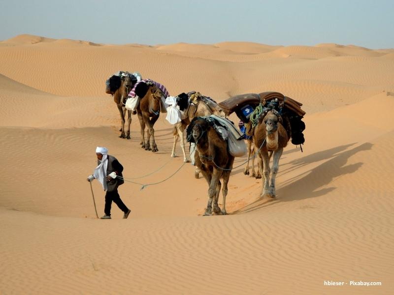 Tunisko: výlet do země pouští, taxíků a artefaktů