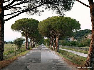 Přírodní park Maremma nadchne přírodou i historií (Itálie)
