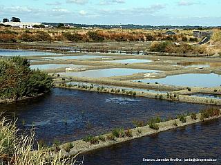 Solná pole Marais Salants s 2000 hektary plochy s historií těžby soli od středověku (Francie)