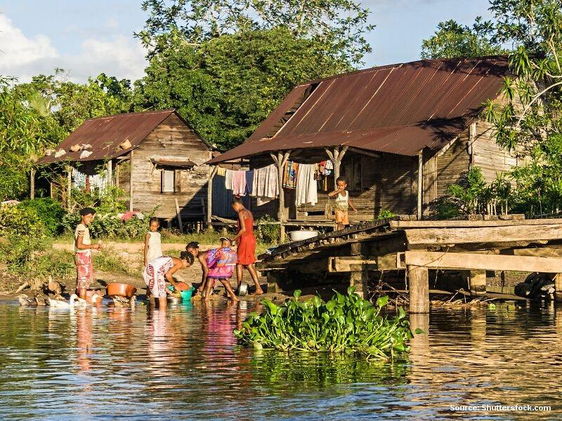 Chudý Madagaskar, ale gramotný