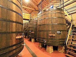 Haro – vinařství Bodegas Muga (Španělsko)