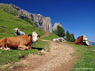 Dolomity po tulácku (Itálie)