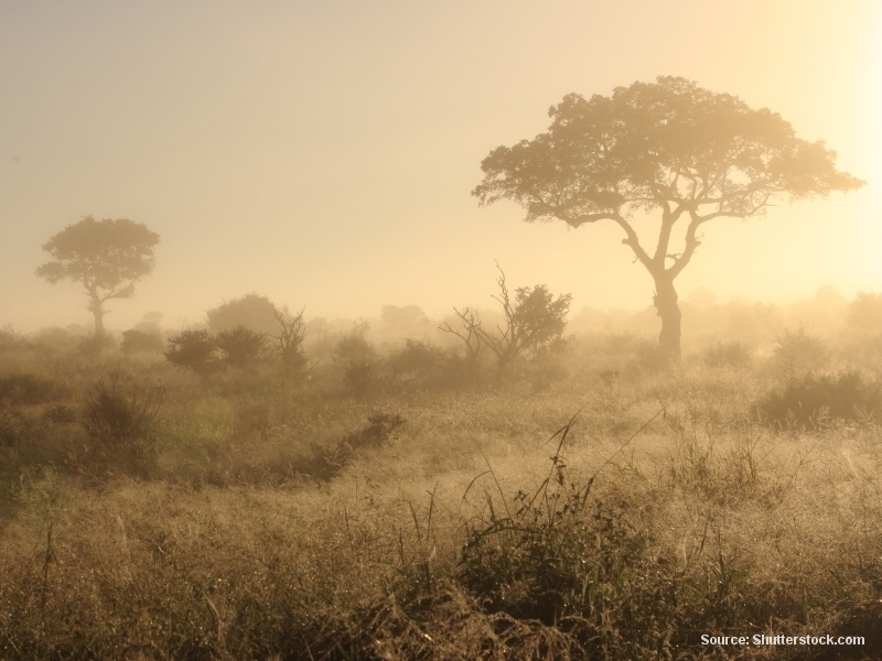 Deník z Jižní Afriky (část 24 / 32)