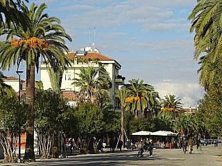 San Benedetto del Tronto je perlou palmové riviéry (Itálie)