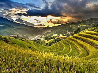 Vietnam je pořádný kus exotiky (Vietnam)