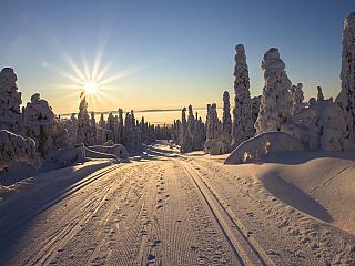 Země tisíců jezer – i tak se velmi často říká státu, který je geograficky obvykle řazen mezi skandinávské země, přestože z faktického i historického hlediska mezi ně nepatří. Na rozdíl od sousedních skandinávských zemí má totiž Finsko odlišný historický, jazykový i kulturní vývoj. Uvádí se, že...