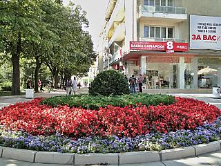 Kazanlak je městečko, které leží v Thrácké nížině. Toto město je známé hlavně kvůli tzv. Údolí růží. Začátkem léta se tu koná festival růží a v okolí to tu krásně kvete. Město Kazanlak je takový dopravní uzel pro dopravu do měst jako je např. Gabrovo, Sliven, Stara Zagora, Veliko Tarnovo či do...