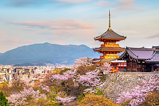 Romantické město ležící uprostřed hor, to není vždy vJaponsku zvykem. Půl druhého milionu obyvatel, ostrov Honšú, místo podpisu proslulé dohody o snížení emisí skleníkových plynů. Jistě, seznamte se sKjótem, které bylo založeno už vroce 794! Dochovala se zde řada památek a symbolicky vzato,...
