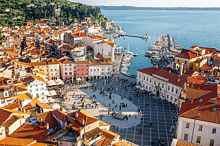 Relativně dobře známé přímořské městečko Piran sice není tak vyhledávané jako Ptuj či Záhřeb, ale pokud jste i vy milovníci cestování, rozhodně stojí za návštěvu. Piran leží ve státě Slovinsko přímo na jeho pobřeží. Velkou zajímavostí je, že má Piran poměrně velké náměstí. Pokud totiž navštívíte...