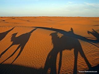 Tunisko – Zeměpis a podnebí (Tunisko)