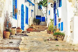 Řekne-li se dovolená vTunisku, většina lidí si ihned představí nádherné pláže, čisté moře a jasnou modrou oblohu. Tunisko však nabízí cestovatelům mnohem více, než pouze opalování na pláži. Jedním ztakových míst, které rozhodně stojí za návštěvu je městečko Sidi Bou Said. Pokud jste slyšeli o...