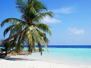 Dovolená na Maledivách (Reklamní sdělení)