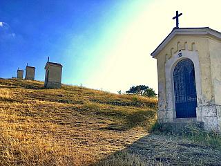 Kalvária je neveľký kopec, ktorý sa nachádza v centre Nitry. Známa je najmä medzi veriacimi, nakoľko je tu kostol, kláštor, kaplnky, ktoré vyobrazujú krížovú cestu, a taktiež sa tu každoročne koná púť pri príležitosti sviatku Nanebovzatia Panny Márie. Tento kopec však ponúka oveľa viac, jeho...