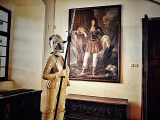 Hrad Červený Kameň, ktorý bol v roku 1949 vyhlásený za národnú kultúrnu pamiatku, ponúka návštevníkom prehliadku honosne zariadených izieb. Nábytok a predmety, ktoré sú tu umiestnené, však z veľkej časti pochádzajú z iných slovenských hradov či zámkov. Tieto artefakty z rôznych dôvodov nemohli...