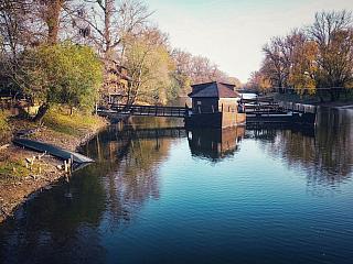 Kolárovo je malé mestečko, ktoré je situované na Žitnom ostrove. Nachádza sa v Komárňanskom okrese Nitrianskeho kraja a je obklopené sútokom riek Váh a Malý Dunaj. Za najväčšie atrakcie tejto lokality je považovaný vodný mlyn a drevený most, ktorý k nemu vedie. Vodný mlyn v Kolárove je drevenou...