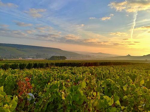 Náklaďákem kolem světa 2 - Champagne - Ardenne ve Francii (Francie)