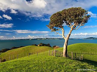 Nový Zéland – aktuální počasí (Nový Zéland)