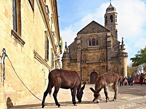 Úbeda - město renesanční historie zapsané v UNESCO (Španělsko)