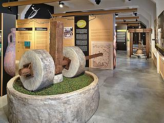 Muzeum olivového oleje v Pule (Chorvatsko)
