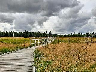 Božídarské rašeliniště je nejrozsáhlejší rezervací Karlovarského kraje (Česká republika)