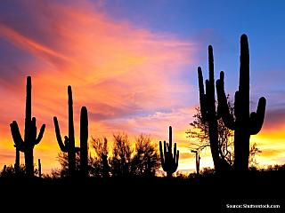Americká poušť II. (Spojené státy americké)