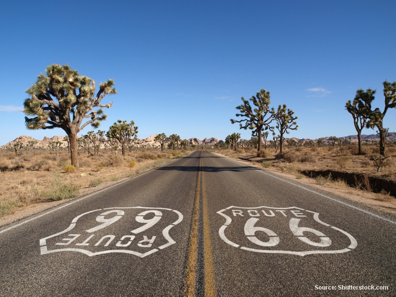 Americká poušť II. – část 10. JOSHUA THREE