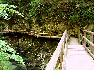 Soutěska Vintgar - procházka kaňonem (Slovinsko)