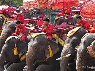 Štěpa ze světa 12 – Bangkok (Thajsko) (Thajsko)