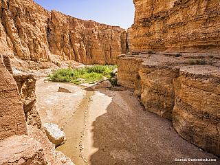 Selja Gorge – jízda Červenou ještěrkou (Tunisko)