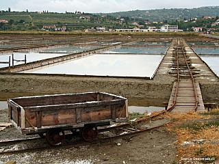 Sečovljská solná pole - chráněné mokřady (Slovinsko)