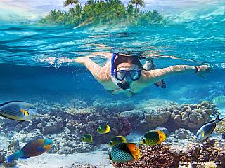 """Thajsko – to nejsou jen krásné pláže a divoký noční život. Na území Thajska totiž leží i několik desítek národních parků. Tedy – celkem jich je něco přes stovku a tvoří zruba 13 procet území tohoto asijského státu. Když se řekne """"dovolená Thajsko"""" představí si většina znás bláznivý Bangkok,..."""
